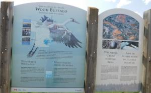 woodwhoop